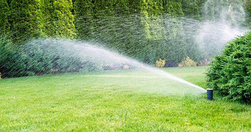 Watering Your Lawn During Drought Restrictions